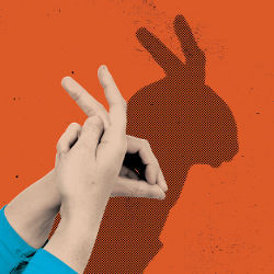 shadow puppet and hands