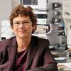 Francine Berman Elected to American Academy of Arts and Sciences